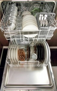 Dishwasher Appliance